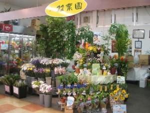 双葉園 中央フード平田店 店内 父の日